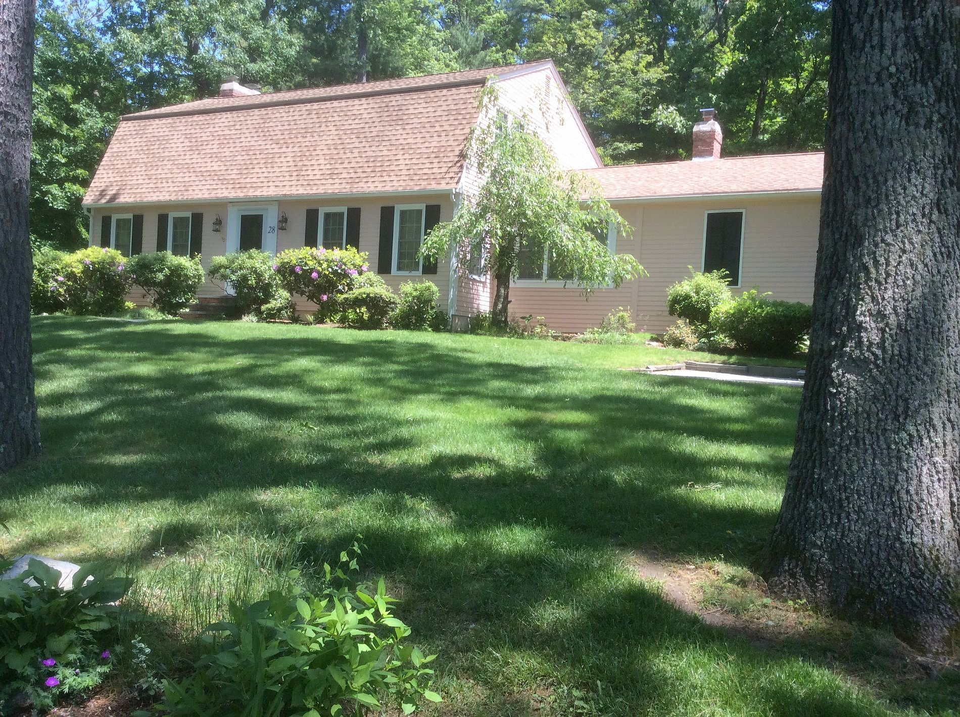 Image of rent to own home in Westford, MA