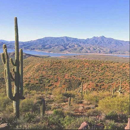Image of rent to own home in Tonto Basin, AZ