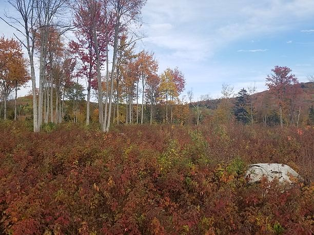 Image of rent to own home in West Topsham, VT