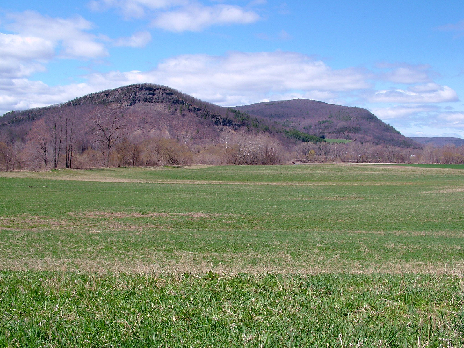 Image of rent to own home in Middleburgh, NY
